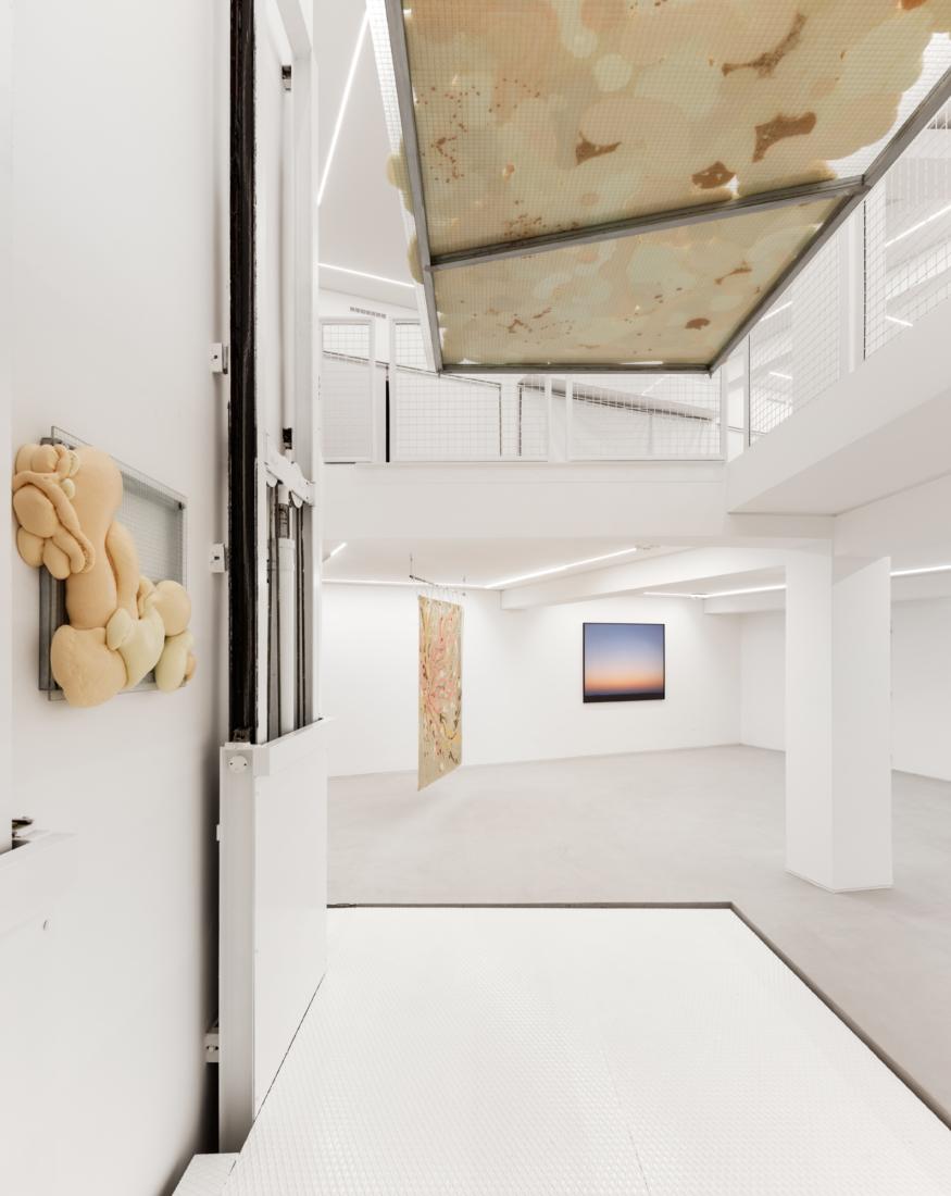 Foco Galeria Amuse-Bouche