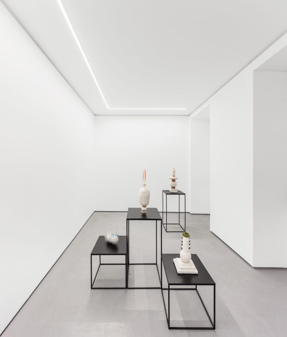 Foco Galeria Thomas Mendonça