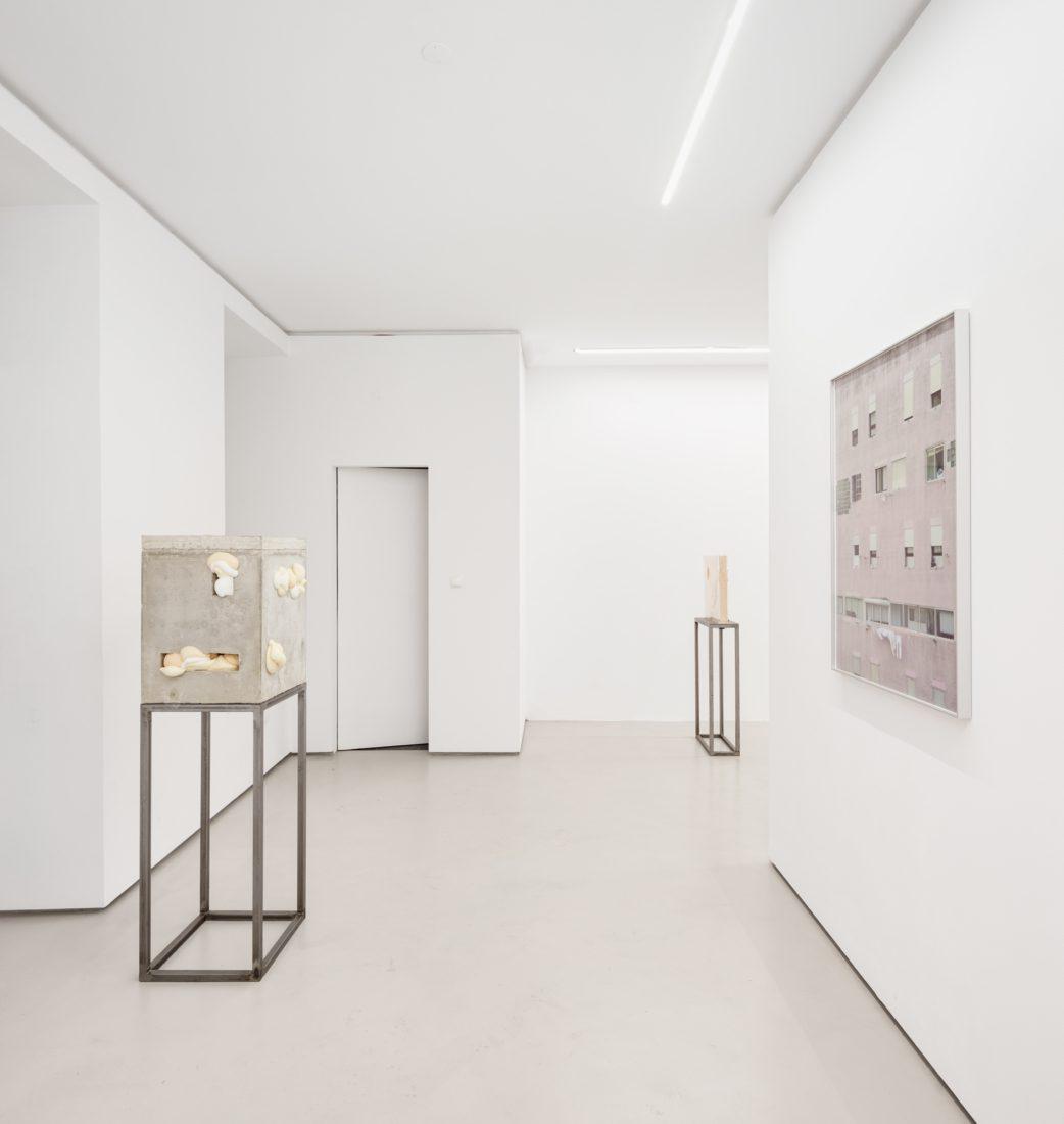Foco Galeria Feelers