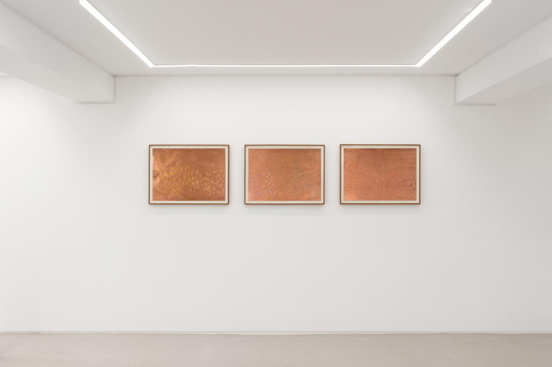 Foco Galeria Luísa Salvador