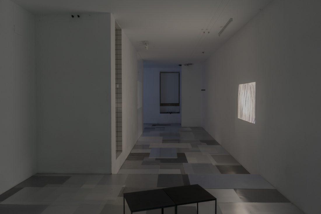 Foco Galeria Tomás Abreu